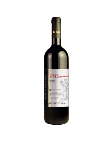 Falco Spalle Rosse - Rosso Umbria IGT